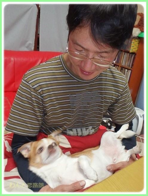 f:id:yasukazu01:20160213202449j:image