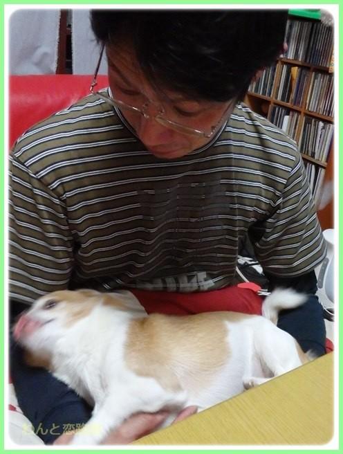 f:id:yasukazu01:20160213202601j:image