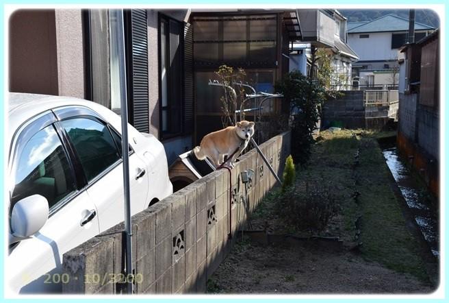 f:id:yasukazu01:20160217183801j:image