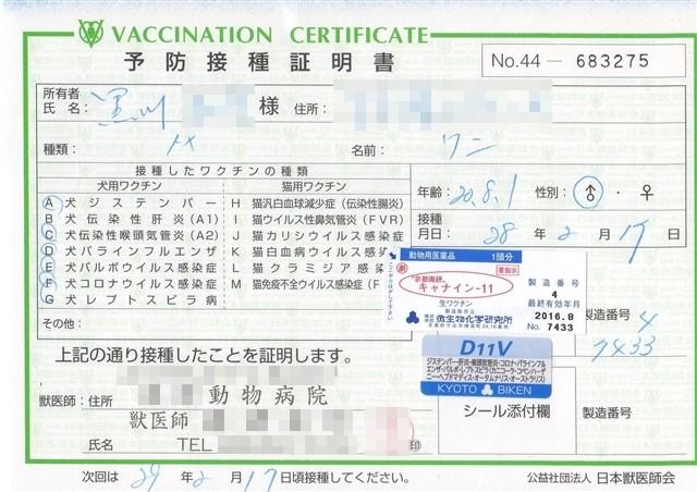 f:id:yasukazu01:20160217184238j:image