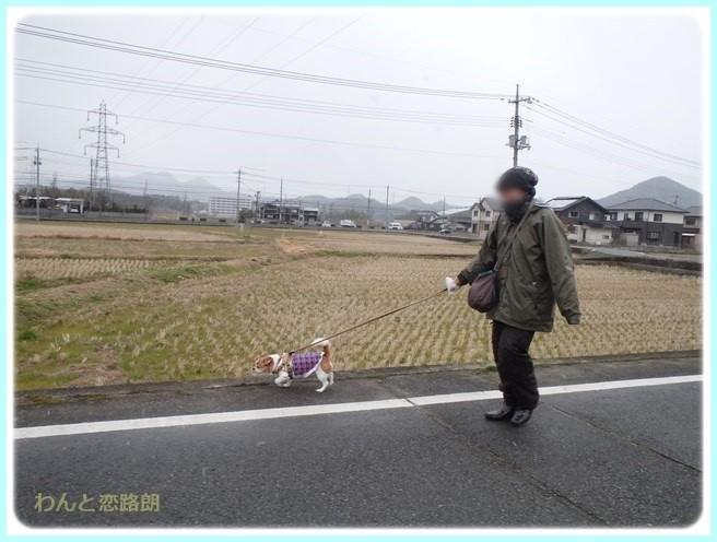 f:id:yasukazu01:20160229184747j:image
