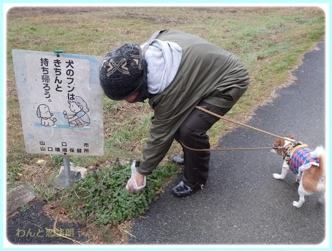 f:id:yasukazu01:20160229185053j:image