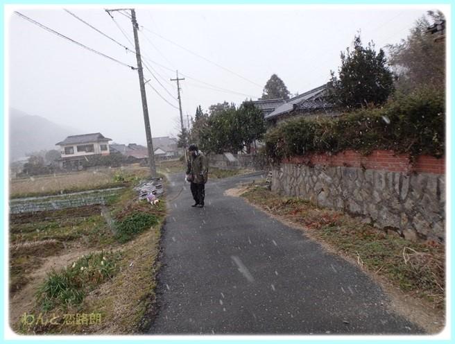 f:id:yasukazu01:20160229185132j:image
