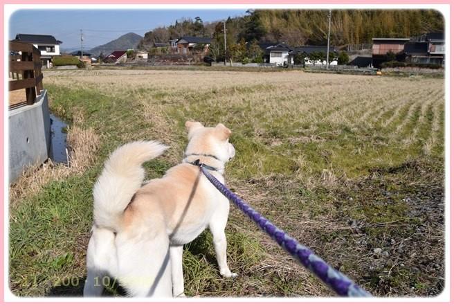 f:id:yasukazu01:20160303205235j:image