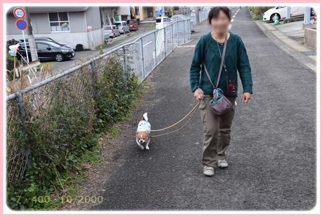 f:id:yasukazu01:20160309183220j:image
