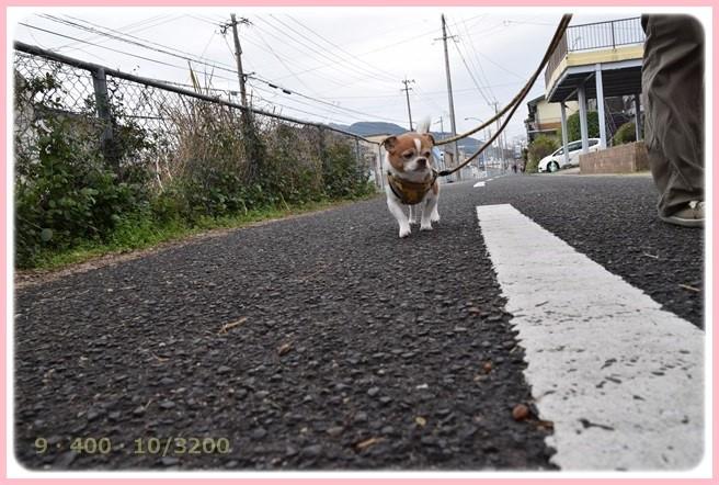 f:id:yasukazu01:20160309183314j:image