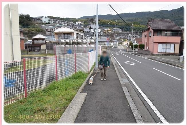 f:id:yasukazu01:20160309183806j:image