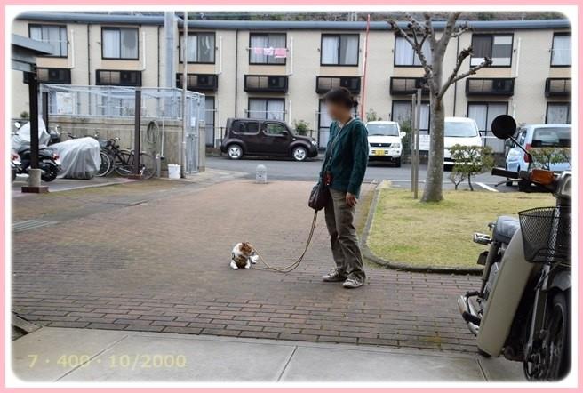 f:id:yasukazu01:20160309184630j:image