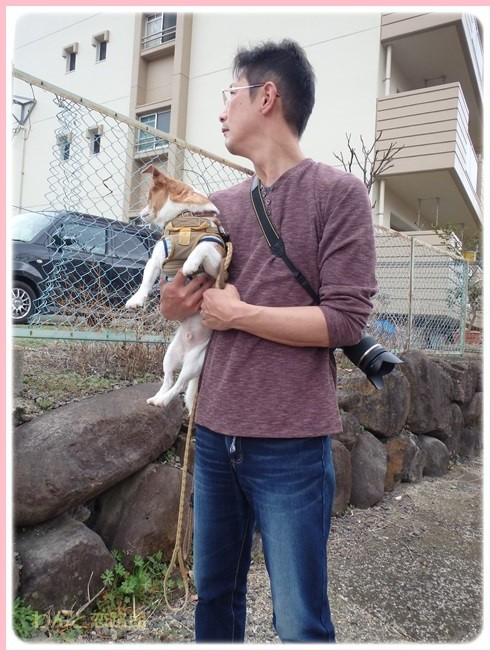 f:id:yasukazu01:20160309185052j:image