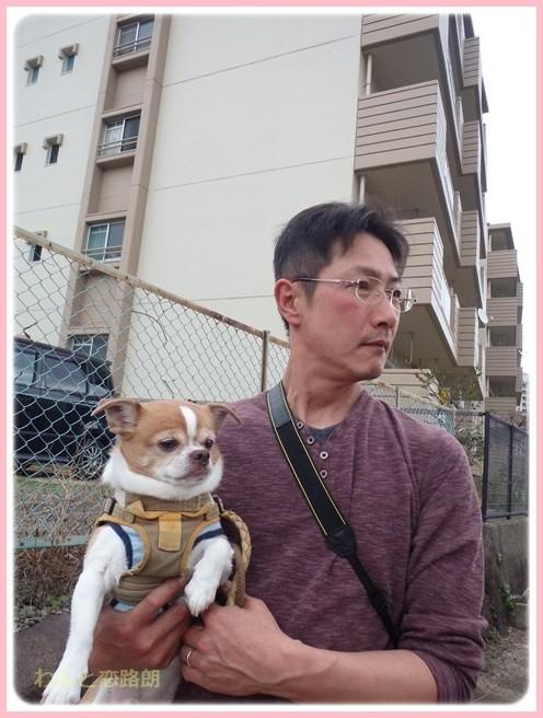 f:id:yasukazu01:20160309185207j:image