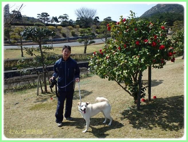 f:id:yasukazu01:20160320213952j:image