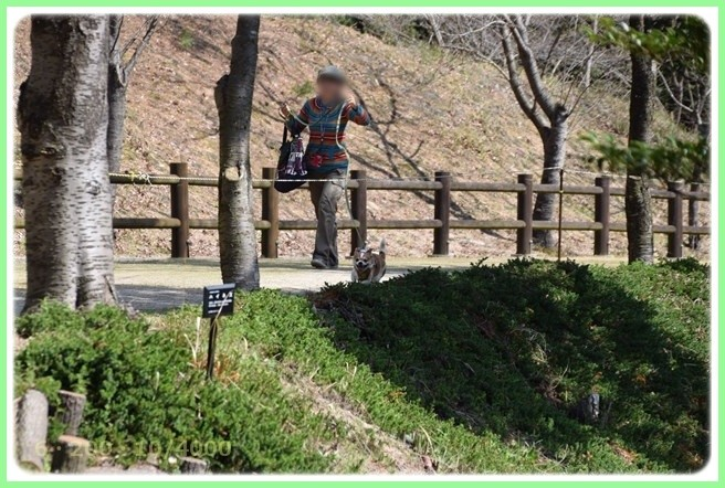 f:id:yasukazu01:20160321203445j:image