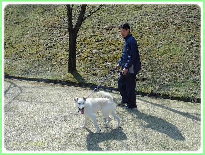 f:id:yasukazu01:20160321204217j:image