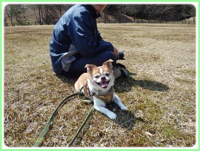 f:id:yasukazu01:20160321205919j:image