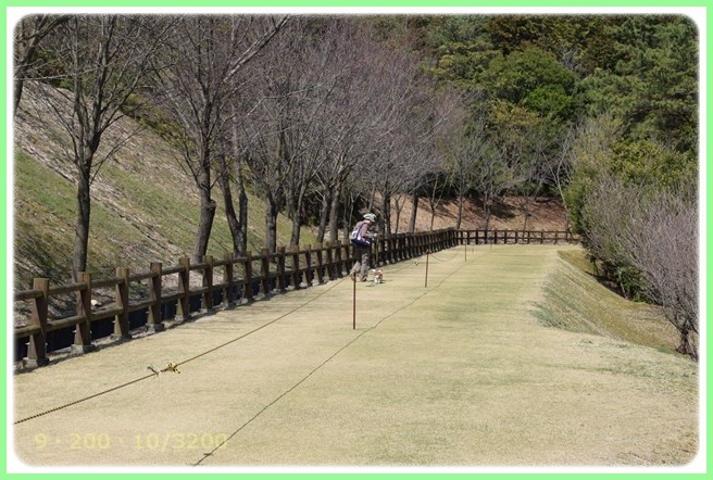 f:id:yasukazu01:20160321213055j:image