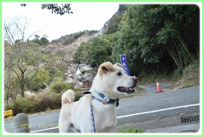 f:id:yasukazu01:20160324202136j:image