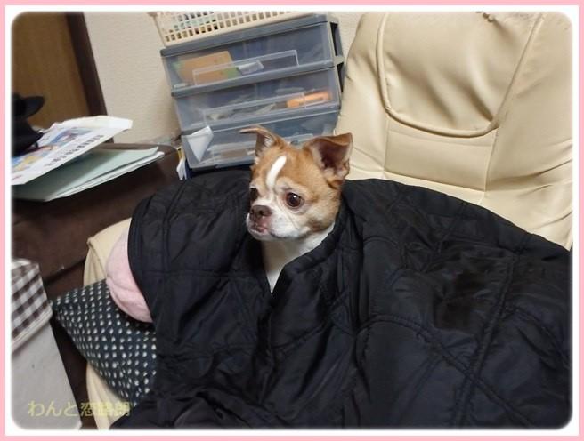 f:id:yasukazu01:20160325210635j:image