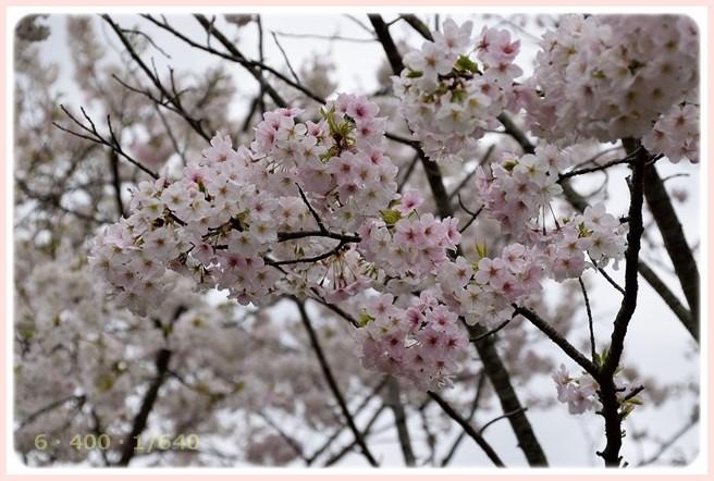 f:id:yasukazu01:20160403200019j:image