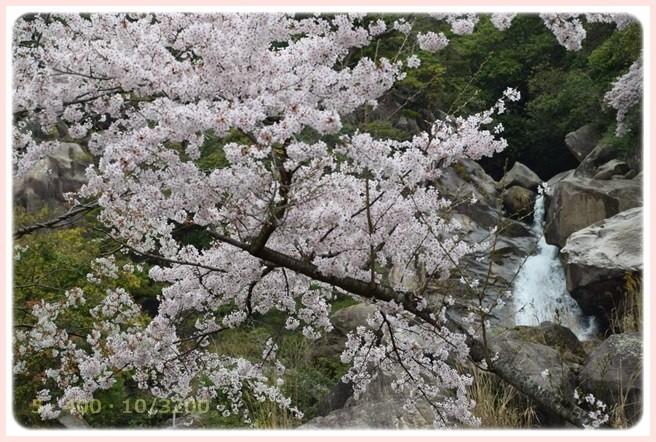 f:id:yasukazu01:20160403200357j:image