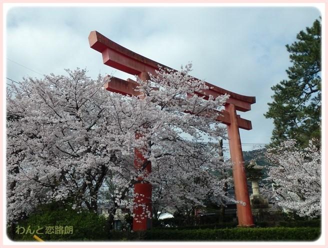 f:id:yasukazu01:20160404114126j:image