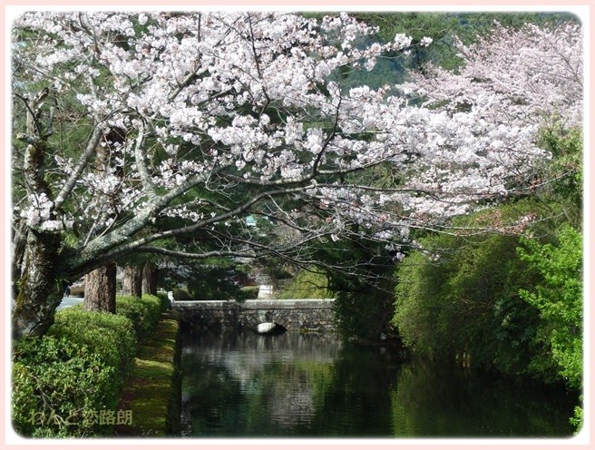 f:id:yasukazu01:20160404114435j:image