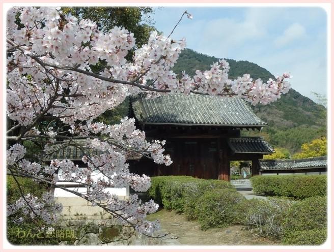 f:id:yasukazu01:20160404114845j:image