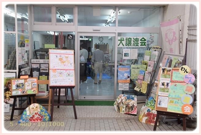 f:id:yasukazu01:20160405101528j:image
