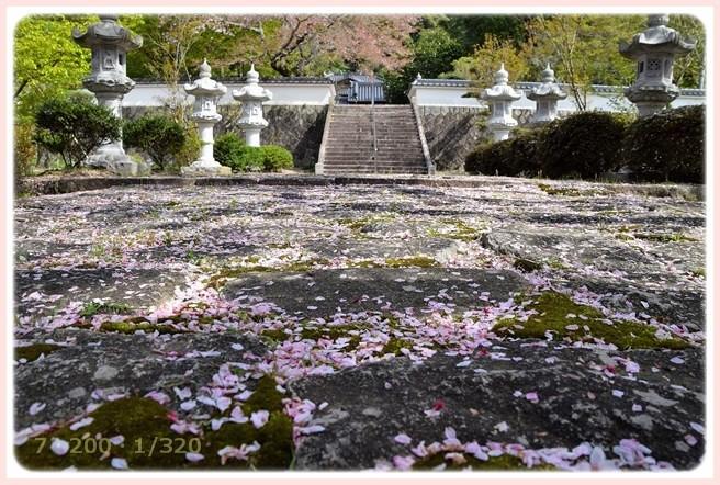 f:id:yasukazu01:20160409120230j:image