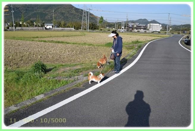 f:id:yasukazu01:20160416183142j:image