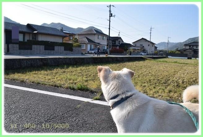 f:id:yasukazu01:20160416183940j:image