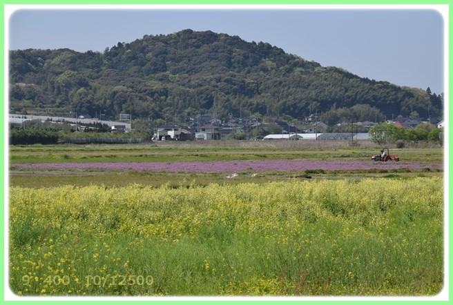 f:id:yasukazu01:20160416192826j:image
