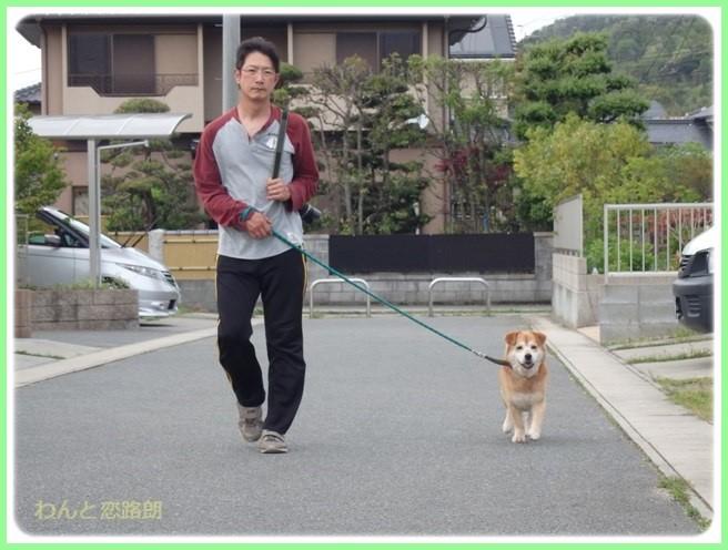 f:id:yasukazu01:20160426203216j:image