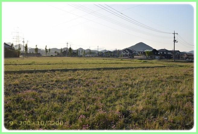 f:id:yasukazu01:20160430211155j:image