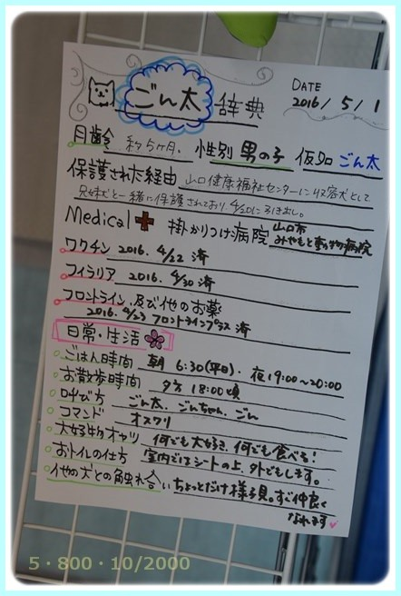 f:id:yasukazu01:20160501215211j:image