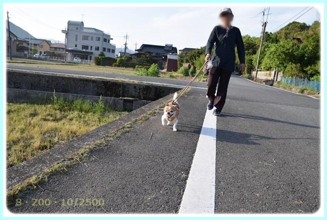 f:id:yasukazu01:20160502211709j:image