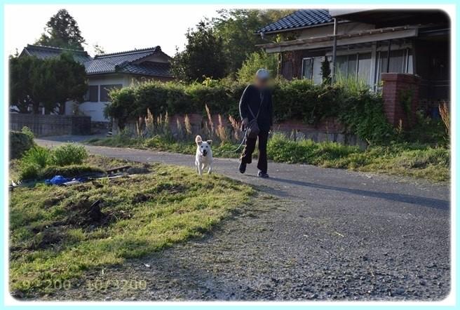 f:id:yasukazu01:20160502212233j:image