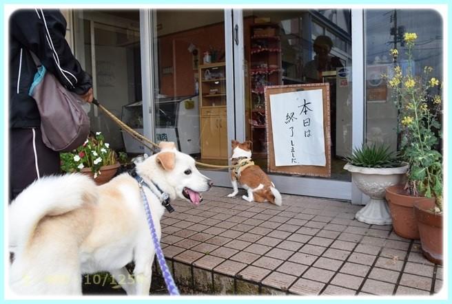 f:id:yasukazu01:20160503204311j:image