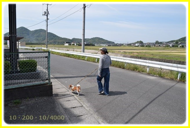 f:id:yasukazu01:20160521205307j:image
