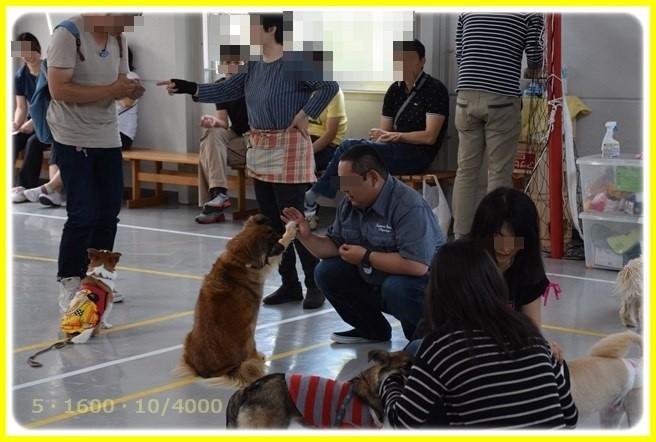 f:id:yasukazu01:20160521212701j:image
