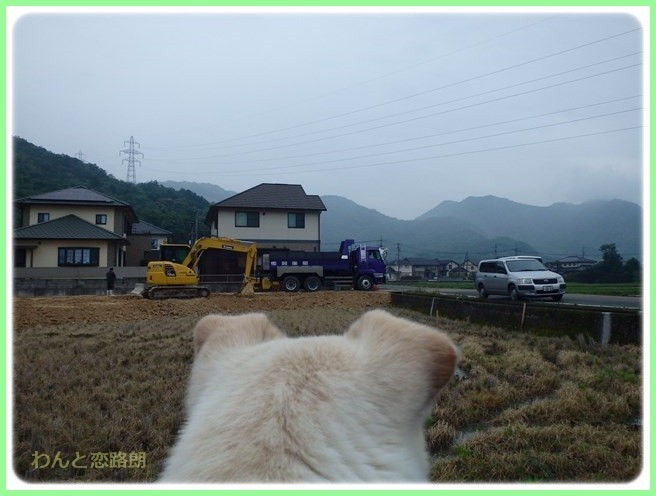 f:id:yasukazu01:20160528195633j:image