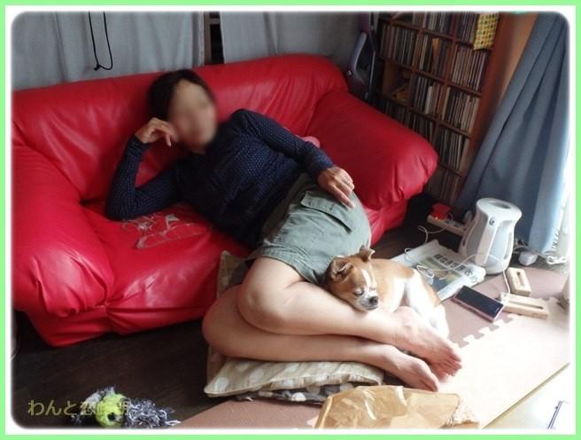 f:id:yasukazu01:20160528200208j:image