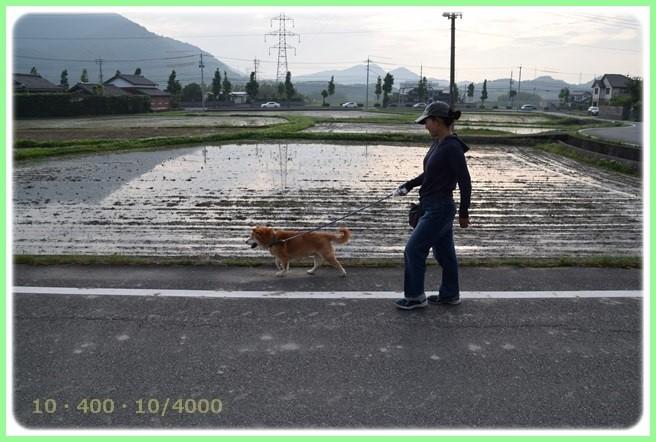 f:id:yasukazu01:20160528201545j:image