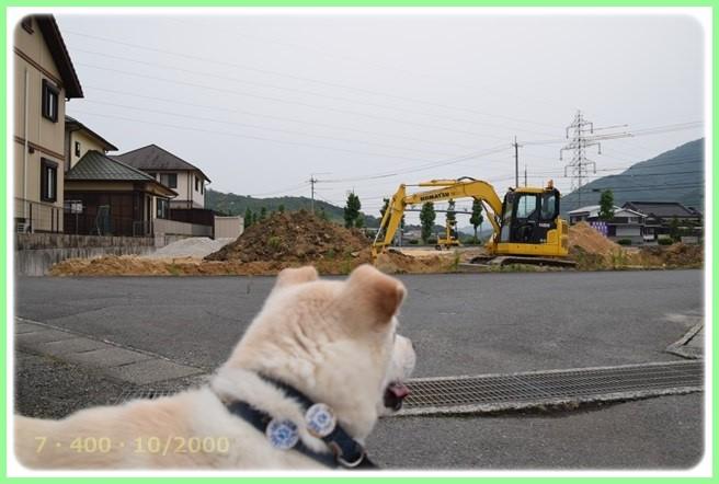 f:id:yasukazu01:20160601211859j:image