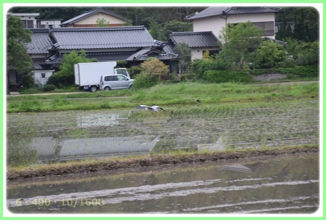 f:id:yasukazu01:20160601212227j:image