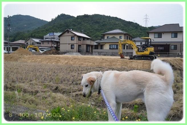 f:id:yasukazu01:20160601212356j:image