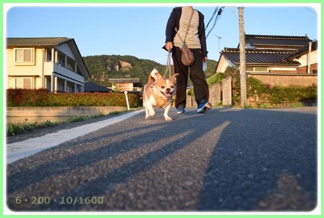 f:id:yasukazu01:20160602203623j:image