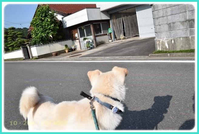 f:id:yasukazu01:20160610211216j:image