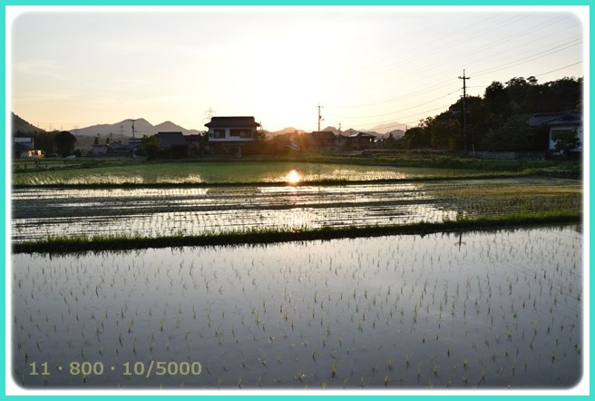 f:id:yasukazu01:20160610212940j:image