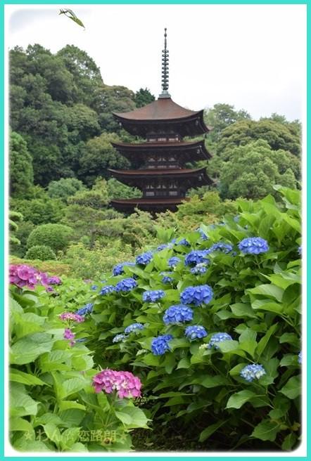 f:id:yasukazu01:20160615205900j:image