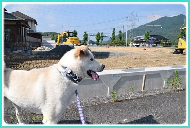 f:id:yasukazu01:20160618201822j:image